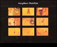 MorgellonsPhotoplate.jpg